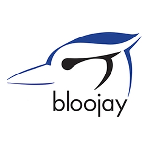 Bloojay Designs