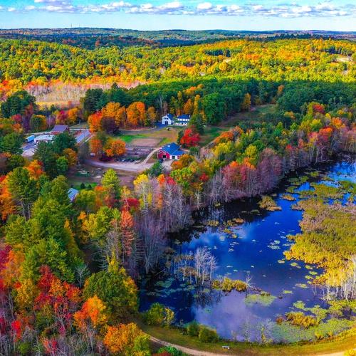 Barn Property Foliage