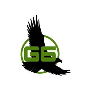 G6 VisionHawk Inc