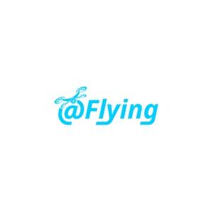 @ Flying